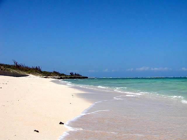 粟国島 海