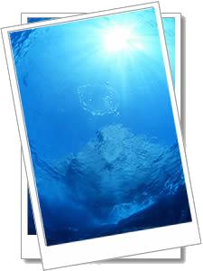 久米島 海の中